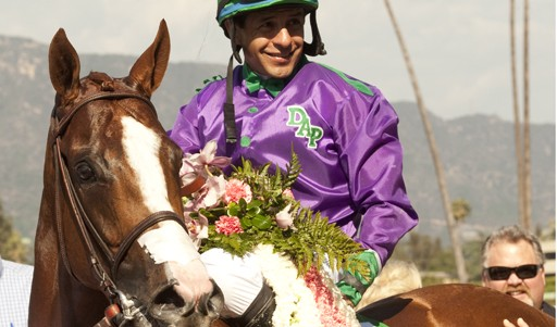 California Chrome deb 2