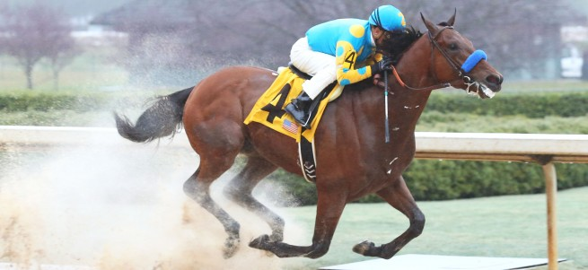 American Pharoah - The Rebel - GII - The 55th Running - 03-14-15 - R10 - OP - Finish