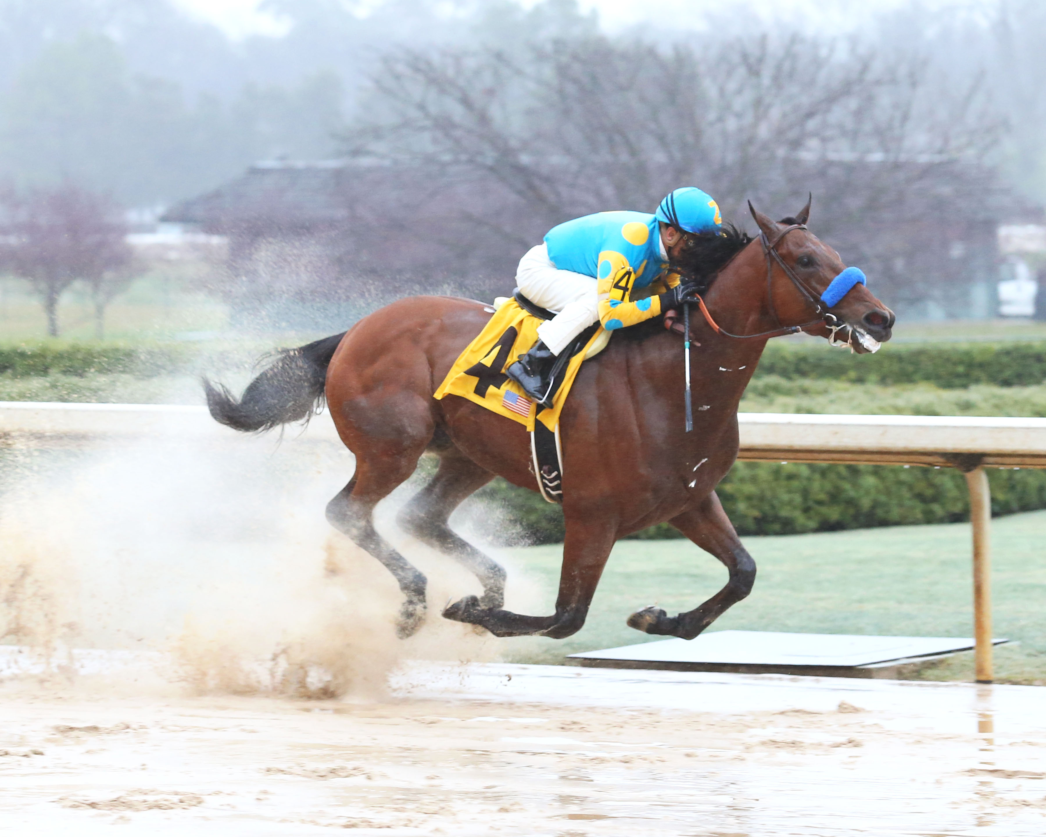 Stable Notes By Ed Golden Sunday March 15 2015 Santa