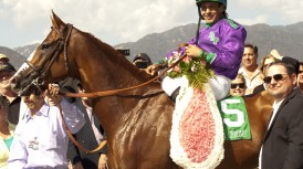 California Chrome wc2 72