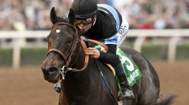 Shared Belief ins1 72