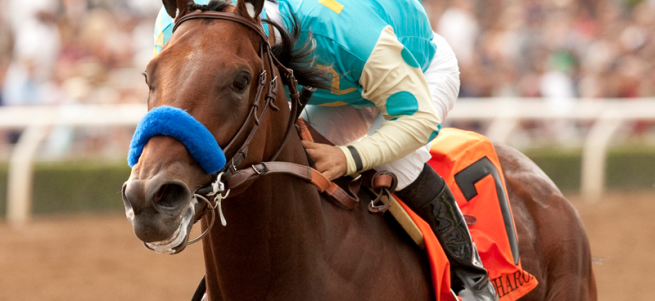 american pharoah quotes