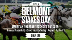 American Pharoah Trackside Package