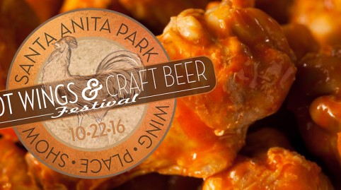 Hot Wings & Craft Beer Festival