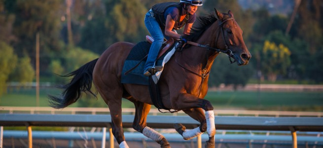 Beholder gallops at Santa Anita Tuesday October 13