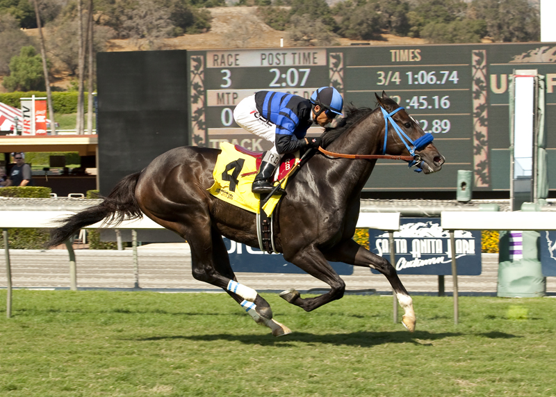 Stable Notes By Ed Golden Thursday January 28 2016