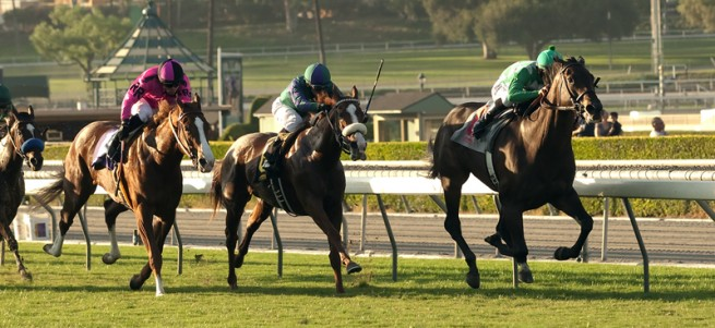 Harris Farms' Velvet Mesquite and jockey Mike Smith, right, win the $100,000 California Distaff Handicap Saturday October 11, 2014 at Santa Anita Park, Arcadia, CA. ©Benoit Photo