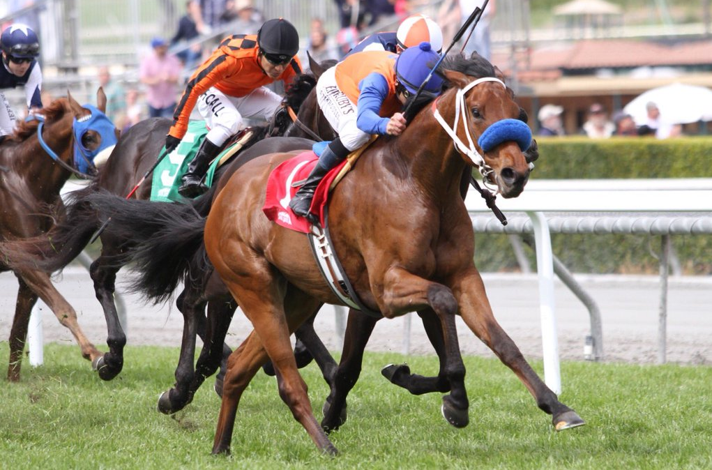 Grade Iii Thunder Road Stakes To Be Part Of Blockbuster