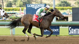 Wild Dude and jockey Rafael Bejarano win the Grade II, $200,000 Kona Gold Stakes, Saturday, May 21, 2016 at Santa Anita Park, Arcadia CA. © BENOIT PHOTO