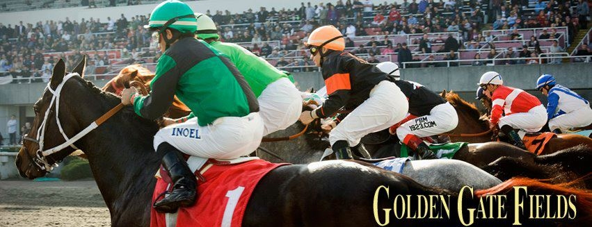 golden gate fields forced to switch races 10 12 from turf to main track as jockeys cite unsafe