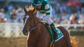 ARCADIA, CA - OCTOBER 01: Stellar Wind #5, ridden by Victor Espinoza win the Zenyatta Stakes at Santa Anita Park on October 01, 2016 in Arcadia, California. (Photo by Zoe Metz/Eclipse Sportswire/Getty Images)