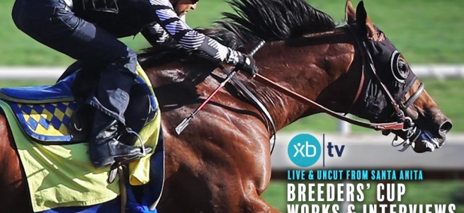 xbtv-bc-works-banner-for-pr