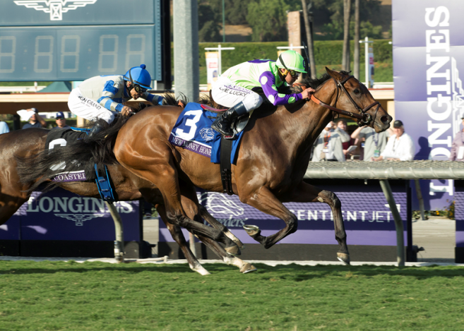 Breeders Cup Post Race Interview Quotes Juvenile