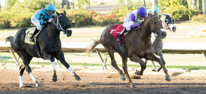 Reddam Racing's Ann Arbor Eddie and jockey Mario Gutierrez, center, draw away from Milton Freewater (Drayden Van Dyke), inside, and California Diamond (Kent Desormeaux), outside, to win the $100,000 King Glorious Stakes Sunday, December 18, 2016 at Los Alamitos Race Course, Cypress, CA. ©Benoit Photo