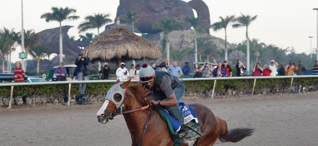 California Chrome last breeze credit Leslie Martin2