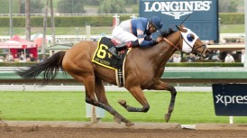 #6 SUNDAY RULES (Edwin Maldonado) $150,000 Donald Valpredo California Cup Sprint Owner: Nick Alexander Trainer: PHilip D'Amato Saturday, January 30, 2016 Santa Anita Park Arcadia CA. © BENOIT PHOTO