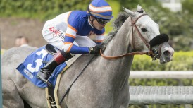 Nick Alexander's Enola Gray and jockey Tyler Baze make easy work of the $100,000 Irish O'Brien Stakes Saturday, March 18, 2017 at Santa Anita Park, Arcadia, CA. ©Benoit photo
