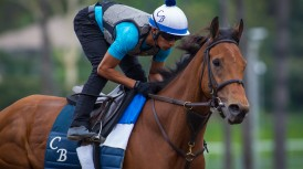 LADY ELI ZM FRI MAY 27