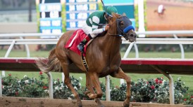 #1 SHENANDOAH QUEEN (Victor Espinoza) $75,000 Tranquility Lake Stakes Owner: Hronis Racing, LLC Trainer: John Sadler Friday, August 25, 2017 Del Mar Thoroughbred Club Del Mar CA. © BENOIT PHOTO
