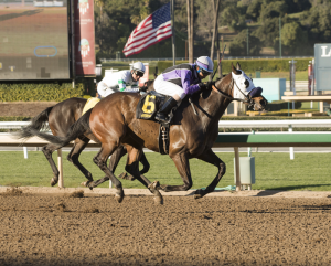 Apprentice Asa Espinoza, 18, tastes victory for the very first time by winning Friday's 7th race at Santa Anita aboard South Texas Lingo